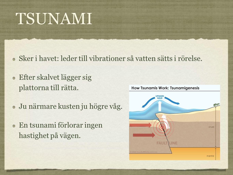 TSUNAMI Sker i havet: leder till vibrationer så vatten sätts i rörelse. Efter skalvet lägger sig plattorna till rätta. Ju närmare kusten ju högre våg.