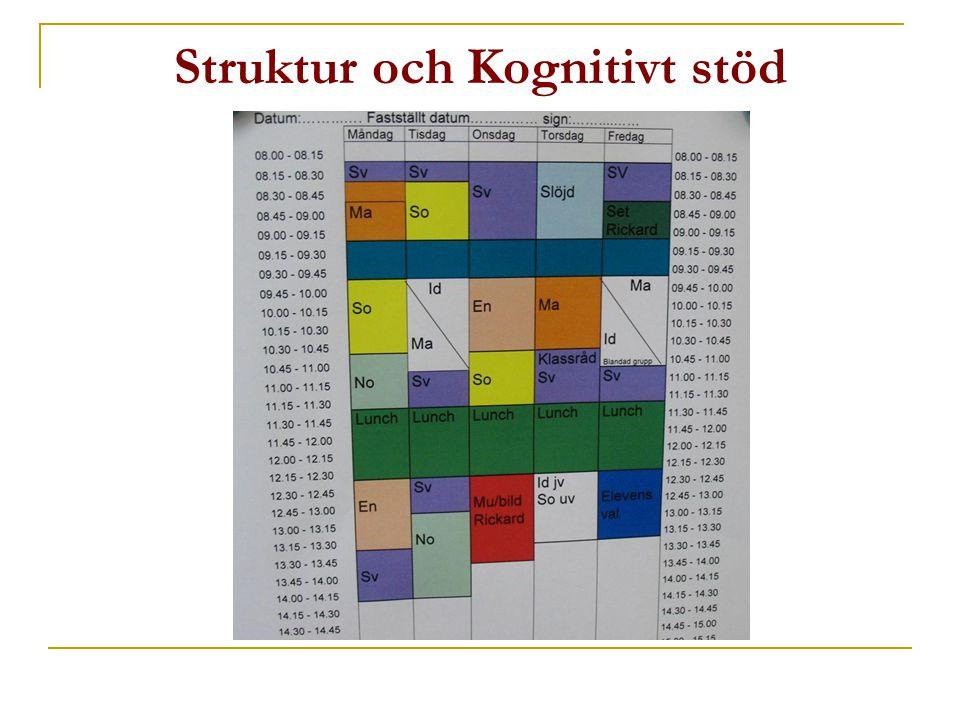 Struktur i vardagen:  i Aktivitet  i Tid  I den fysiska omgivningen  I Mänskliga möten