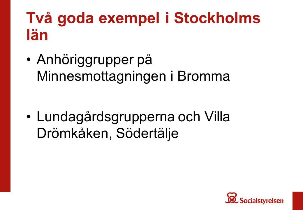 Två goda exempel i Stockholms län •Anhöriggrupper på Minnesmottagningen i Bromma •Lundagårdsgrupperna och Villa Drömkåken, Södertälje