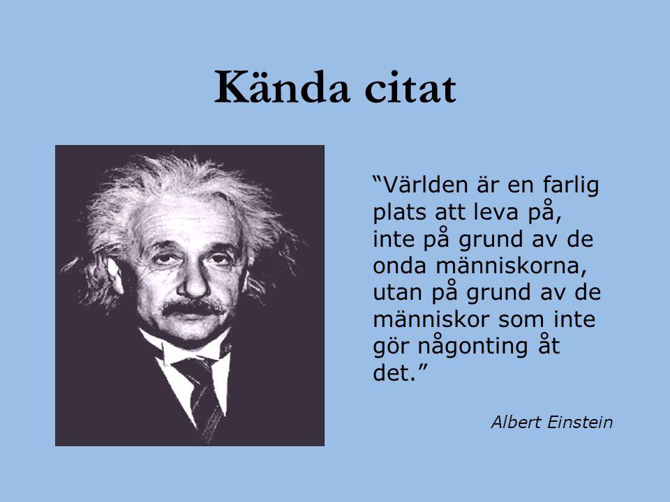 """Kända citat """"Världen är en farlig plats att leva på, inte på grund av de onda människorna, utan på grund av de människor som inte gör någonting åt det"""