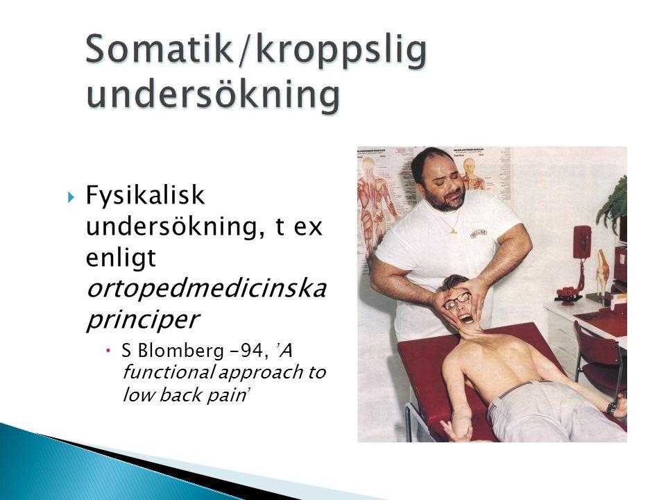  Fysikalisk undersökning, t ex enligt ortopedmedicinska principer  S Blomberg -94, 'A functional approach to low back pain'