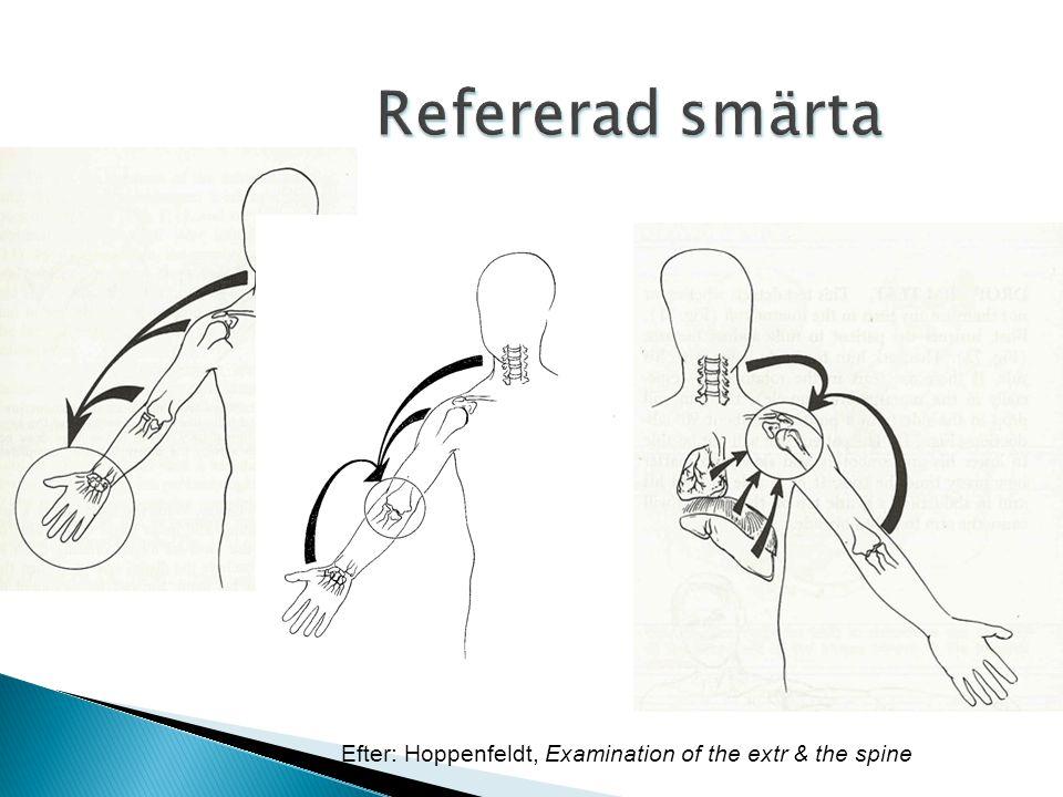 Efter: Hoppenfeldt, Examination of the extr & the spine