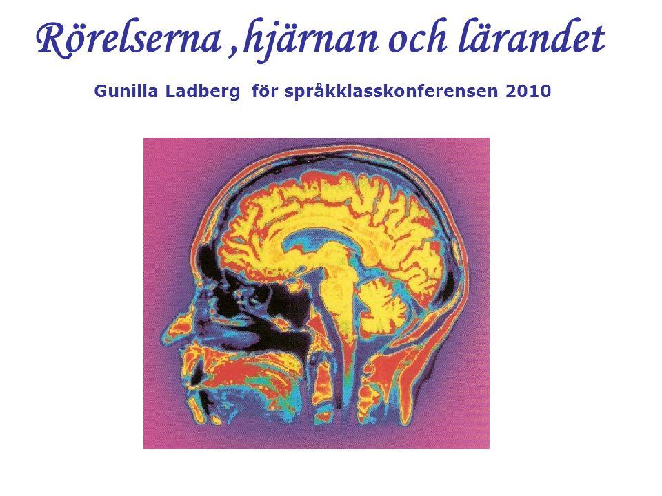 Rörelserna,hjärnan och lärandet Gunilla Ladberg för språkklasskonferensen 2010