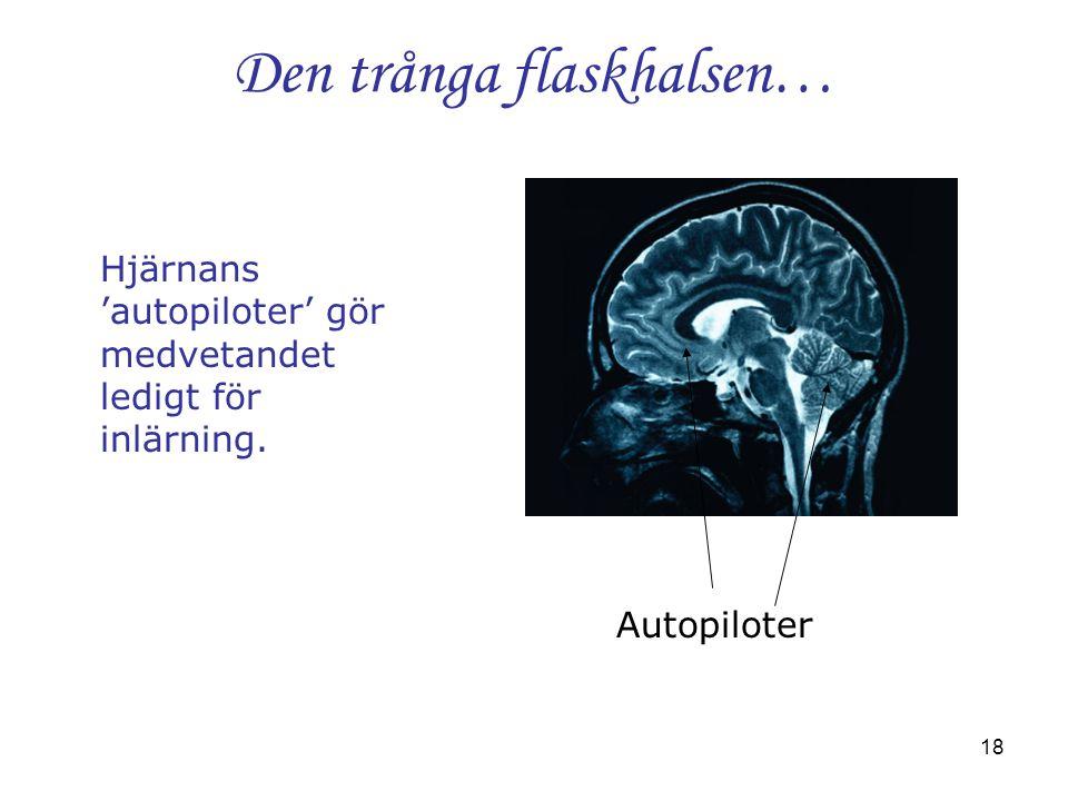 18 Den trånga flaskhalsen… Hjärnans 'autopiloter' gör medvetandet ledigt för inlärning. Autopiloter