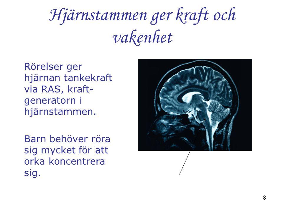 8 Hjärnstammen ger kraft och vakenhet Rörelser ger hjärnan tankekraft via RAS, kraft- generatorn i hjärnstammen. Barn behöver röra sig mycket för att