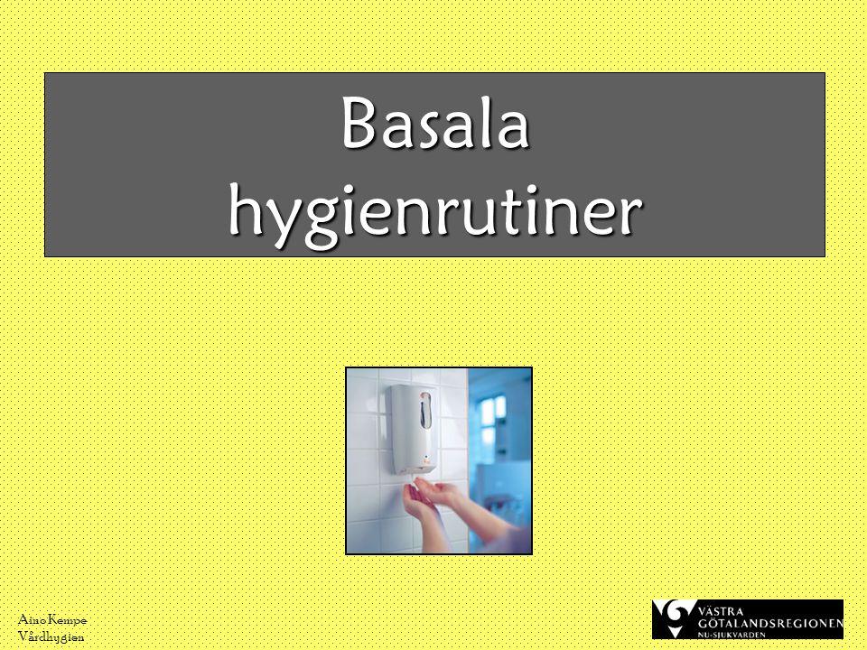 Aino Kempe Vårdhygien Hur ska vi tänka.•Riskfaktorer - sår - eksem - diarré - KAD, infarter m.m.