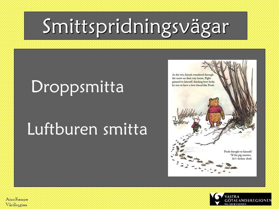Aino Kempe Vårdhygien Smittspridningsvägar Droppsmitta Luftburen smitta