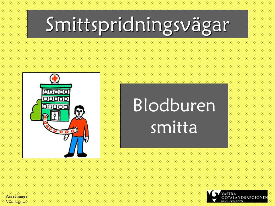Aino Kempe Vårdhygien Blodburen smitta Smittspridningsvägar
