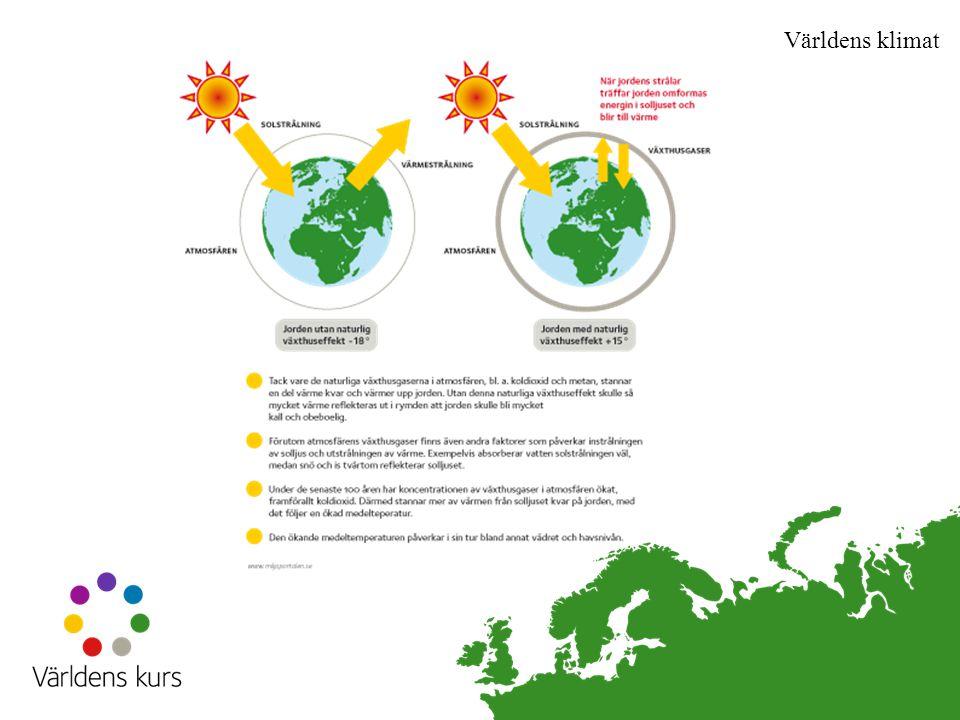 Världens klimat De senaste åren har 262 miljoner människor/år drabbats av klimatrelaterade katastrofer.