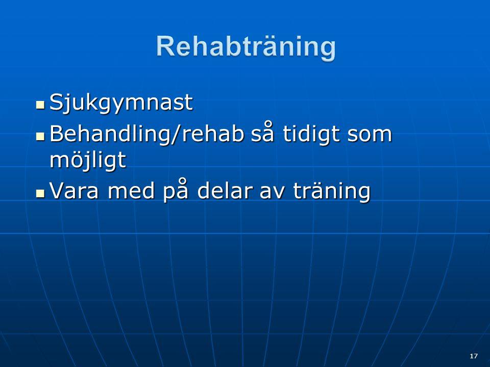  Sjukgymnast  Behandling/rehab så tidigt som möjligt  Vara med på delar av träning 17