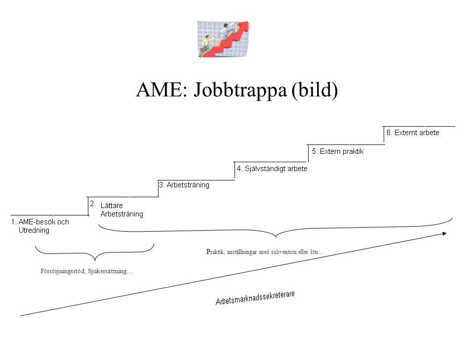 Försörjningsstöd, Sjukersättning… P raktik, anställningar med subvention eller lön… AME: Jobbtrappa (bild)
