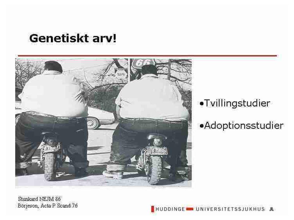 Liten risk att förbli fet Från vilken ålder är fetma farligt.