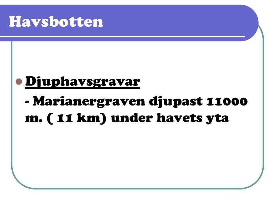 Havsbotten  Djuphavsgravar - Marianergraven djupast 11000 m. ( 11 km) under havets yta