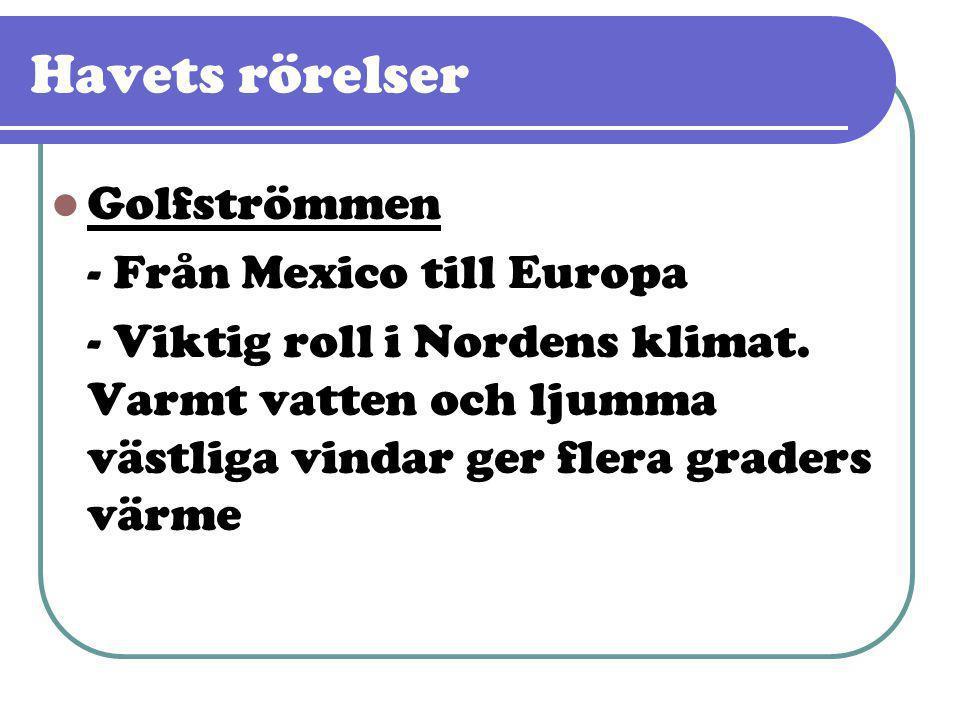 Golfströmmen - Från Mexico till Europa - Viktig roll i Nordens klimat. Varmt vatten och ljumma västliga vindar ger flera graders värme