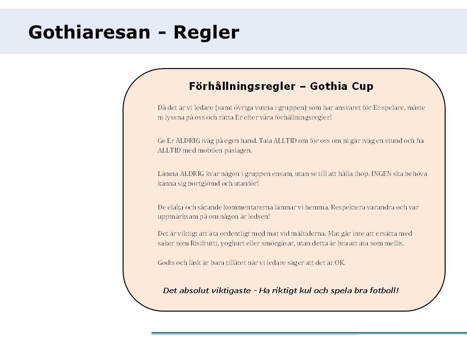 eCommerce Programme Gothiaresan - Regler