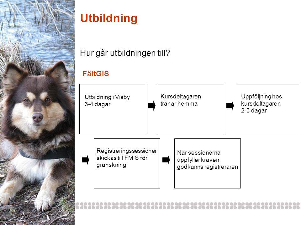 Utbildning Hur går utbildningen till? Utbildning i Visby 3-4 dagar Kursdeltagaren tränar hemma Uppföljning hos kursdeltagaren 2-3 dagar FältGIS När se