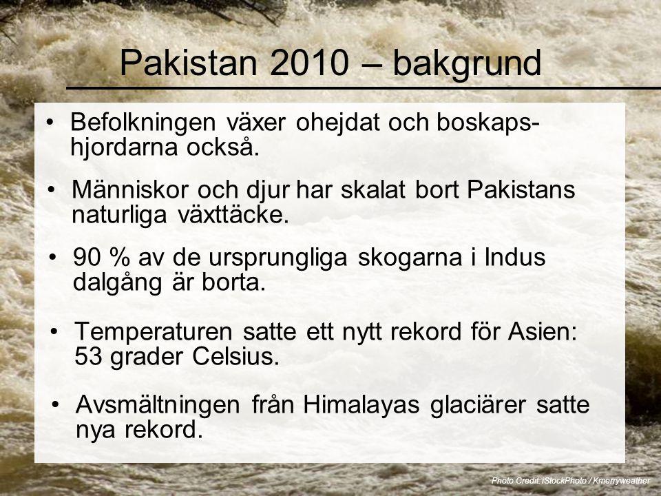 Pakistan 2010 – bakgrund •Befolkningen växer ohejdat och boskaps- hjordarna också. Photo Credit: iStockPhoto / Kmerryweather •Människor och djur har s