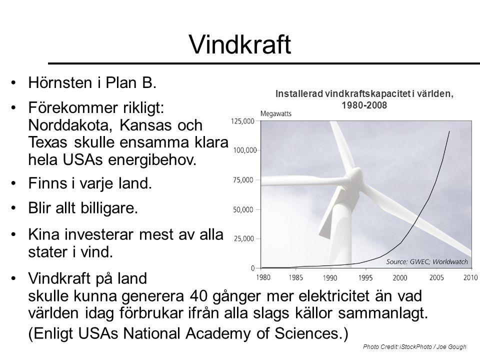 Installerad vindkraftskapacitet i världen, 1980-2008 Vindkraft •Hörnsten i Plan B. Photo Credit: iStockPhoto / Joe Gough •Förekommer rikligt: Norddako