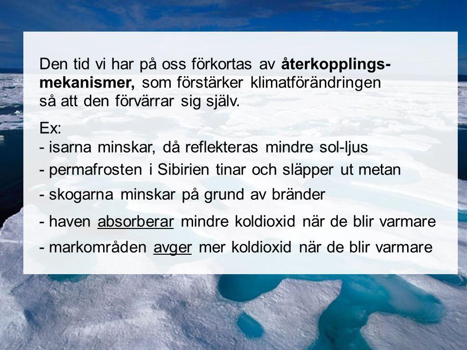 Norra ishavet Den tid vi har på oss förkortas av återkopplings- mekanismer, som förstärker klimatförändringen så att den förvärrar sig själv.