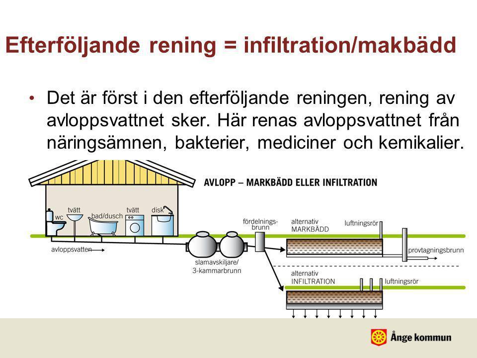 Efterföljande rening = infiltration/makbädd • Det är först i den efterföljande reningen, rening av avloppsvattnet sker. Här renas avloppsvattnet från