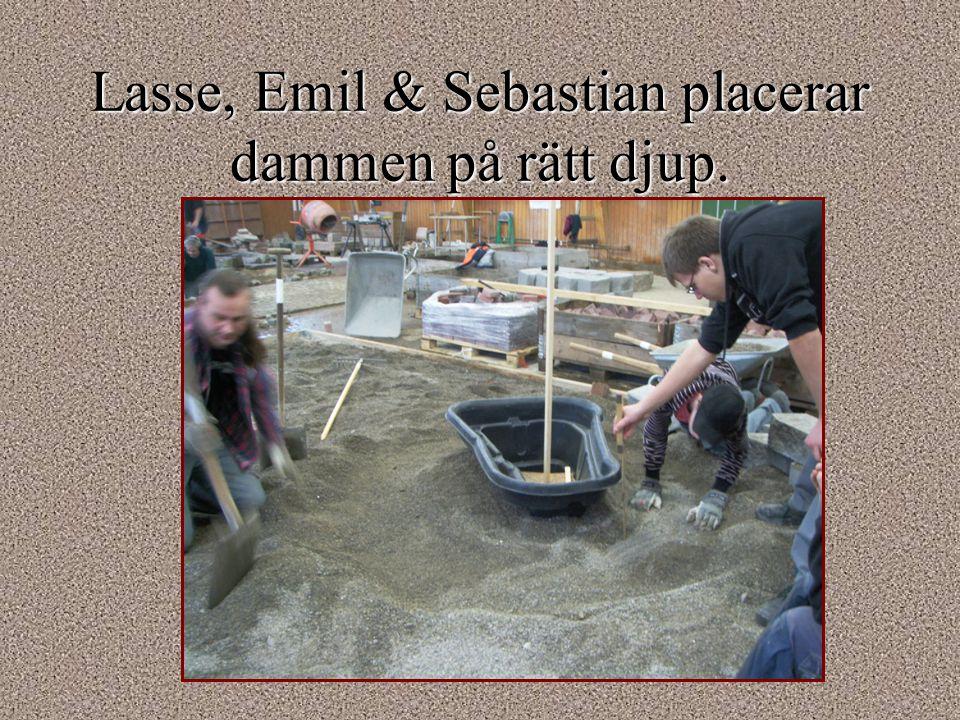 Lasse, Emil & Sebastian placerar dammen på rätt djup.