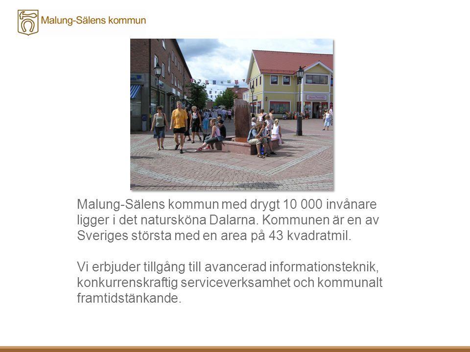 Ett givande samarbete med SITE 2011-2013  Projektet har bevakat viktiga utvecklingsfrågor och initierat nya gränsöverskridande samarbeten: exempelvis offentlig- och privat sektor, Region Dalarna, Länsstyrelsen, Trafikverket och destinationsbolag/sällskap.