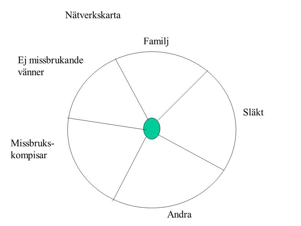 Nätverkskarta Familj Släkt Ej missbrukande vänner Missbruks- kompisar Andra