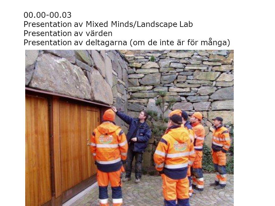 00.00-00.03 Presentation av Mixed Minds/Landscape Lab Presentation av värden Presentation av deltagarna (om de inte är för många)