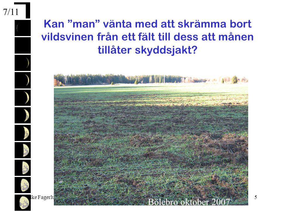 Folke Fagerlund2007-11-055 Kan man vänta med att skrämma bort vildsvinen från ett fält till dess att månen tillåter skyddsjakt.