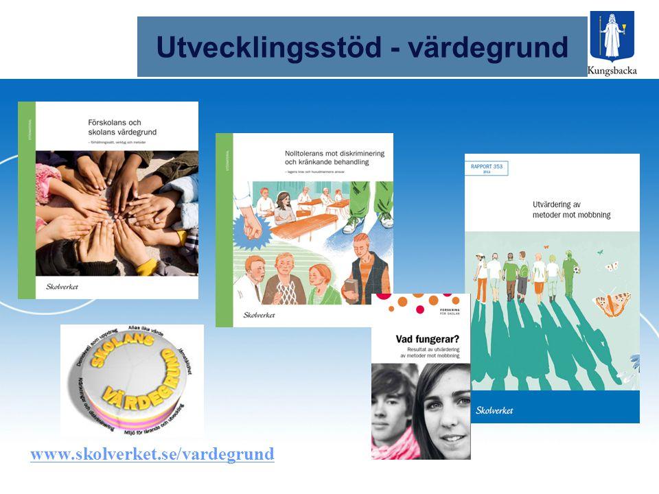 Utvecklingsstöd Utvecklingsstöd - värdegrund www.skolverket.se/vardegrund