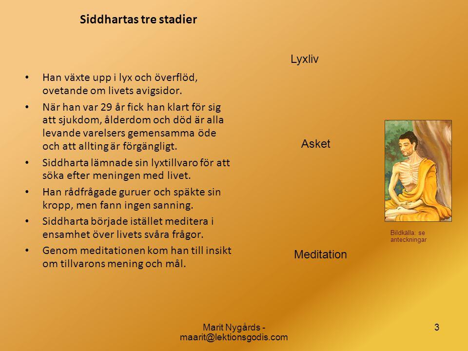 3 Siddhartas tre stadier • Han växte upp i lyx och överflöd, ovetande om livets avigsidor. • När han var 29 år fick han klart för sig att sjukdom, åld