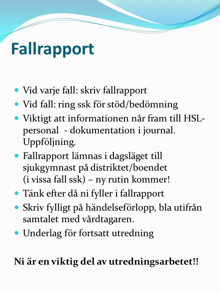 Fallrapport  Vid varje fall: skriv fallrapport  Vid fall: ring ssk för stöd/bedömning  Viktigt att informationen når fram till HSL- personal - doku