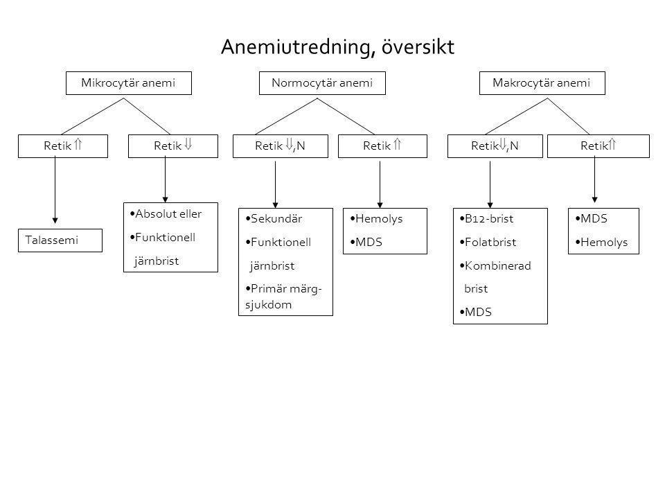 Anemiutredning, översikt Mikrocytär anemi Retik  Retik ,NRetik  •Absolut eller •Funktionell järnbrist Talassemi •B12-brist •Folatbrist •Kombinerad brist •MDS •Hemolys Retik ,NRetik  •Sekundär •Funktionell järnbrist •Primär märg- sjukdom •Hemolys •MDS Retik  Normocytär anemiMakrocytär anemi