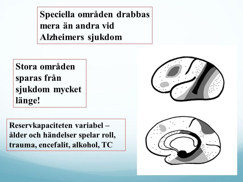 Speciella områden drabbas mera än andra vid Alzheimers sjukdom Stora områden sparas från sjukdom mycket länge! Reservkapaciteten variabel – ålder och