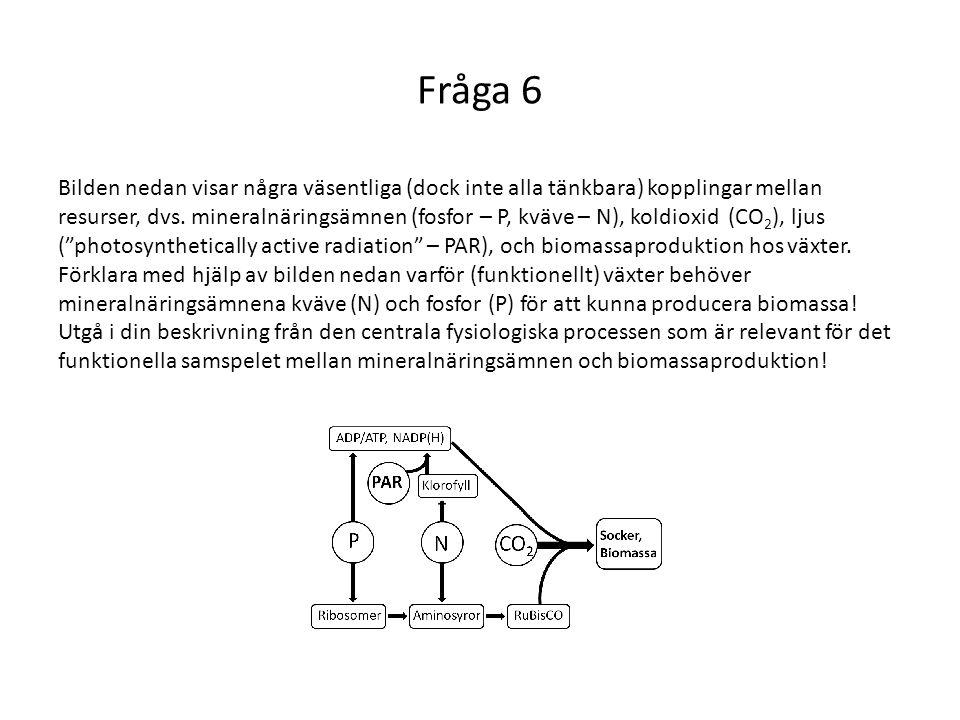 Fråga 6 Bilden nedan visar några väsentliga (dock inte alla tänkbara) kopplingar mellan resurser, dvs. mineralnäringsämnen (fosfor – P, kväve – N), ko