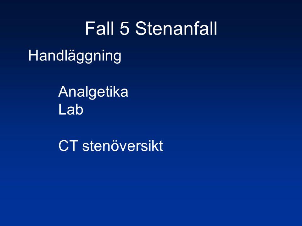 Handläggning Analgetika Lab CT stenöversikt