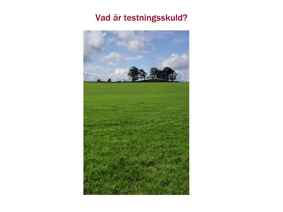 Testningsskuld Vi undersöker närmare Hur man identifierar saker som ökar testningsskulden Hur minskar man testningsskulden