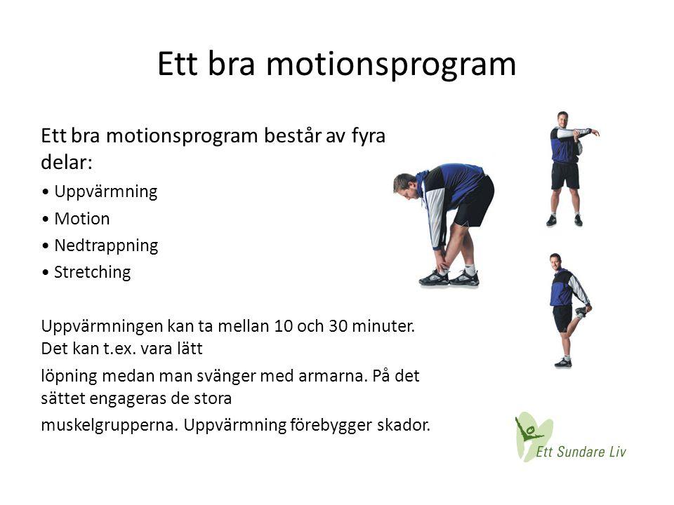 Ett bra motionsprogram Ett bra motionsprogram består av fyra delar: • Uppvärmning • Motion • Nedtrappning • Stretching Uppvärmningen kan ta mellan 10