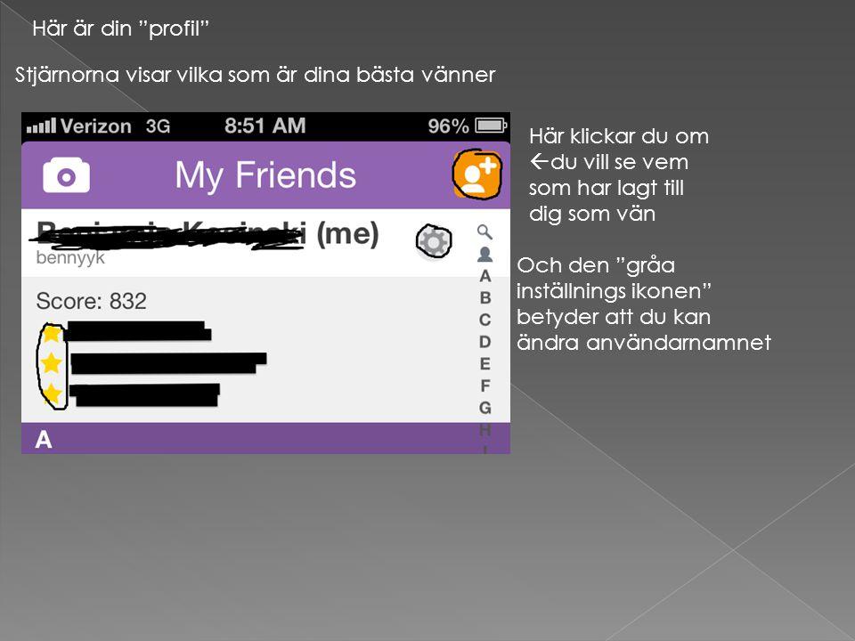 """Här är din """"profil"""" Stjärnorna visar vilka som är dina bästa vänner Här klickar du om  du vill se vem som har lagt till dig som vän Och den """"gråa ins"""