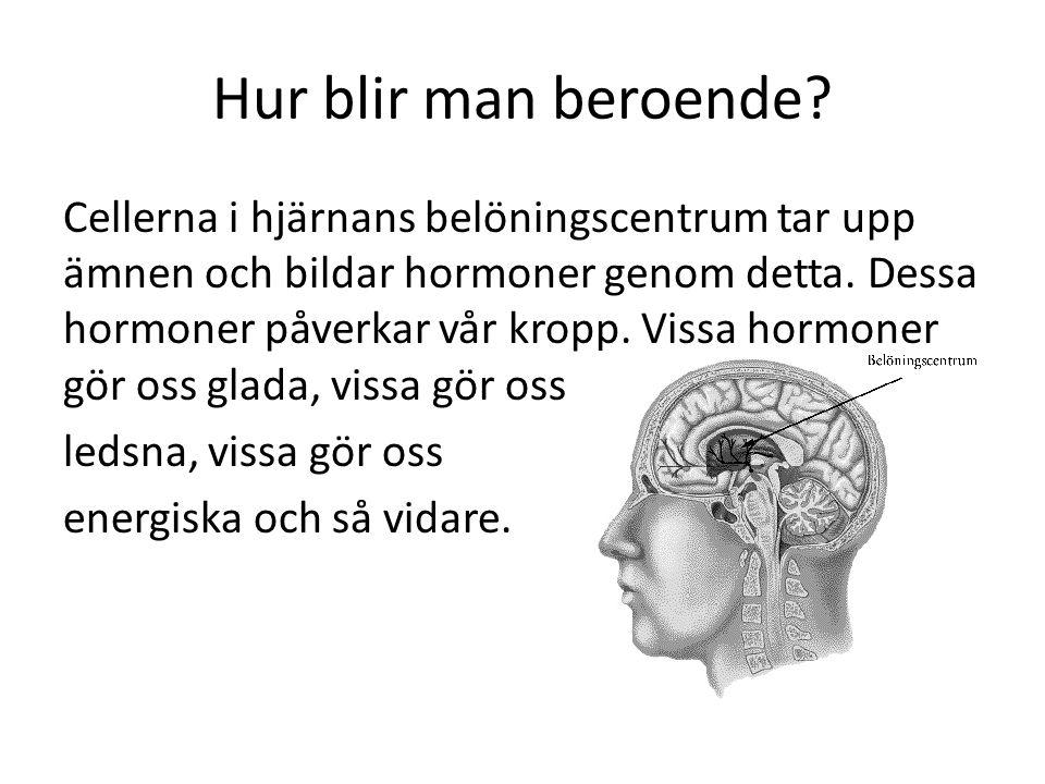Hur blir man beroende? Cellerna i hjärnans belöningscentrum tar upp ämnen och bildar hormoner genom detta. Dessa hormoner påverkar vår kropp. Vissa ho