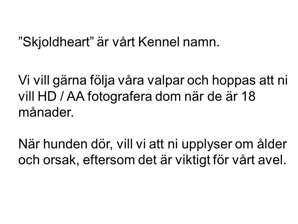 """""""Skjoldheart"""" är vårt Kennel namn. Vi vill gärna följa våra valpar och hoppas att ni vill HD / AA fotografera dom när de är 18 månader. När hunden dör"""