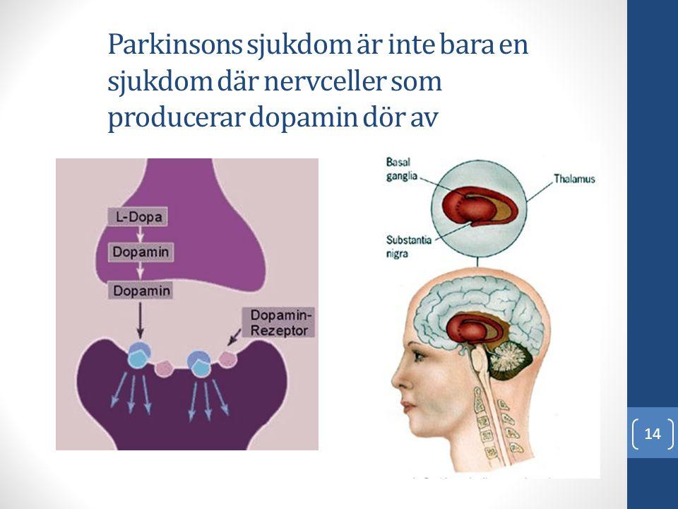 Parkinsons sjukdom är inte bara en sjukdom där nervceller som producerar dopamin dör av 14