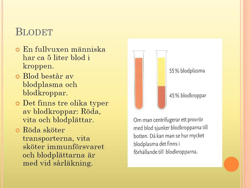 B LODET En fullvuxen människa har ca 5 liter blod i kroppen. Blod består av blodplasma och blodkroppar. Det finns tre olika typer av blodkroppar: Röda