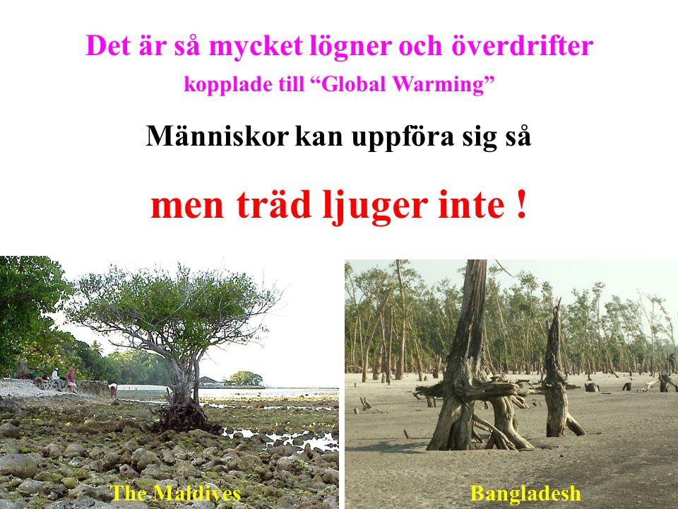 """Det är så mycket lögner och överdrifter kopplade till """"Global Warming"""" Människor kan uppföra sig så men träd ljuger inte ! The MaldivesBangladesh"""