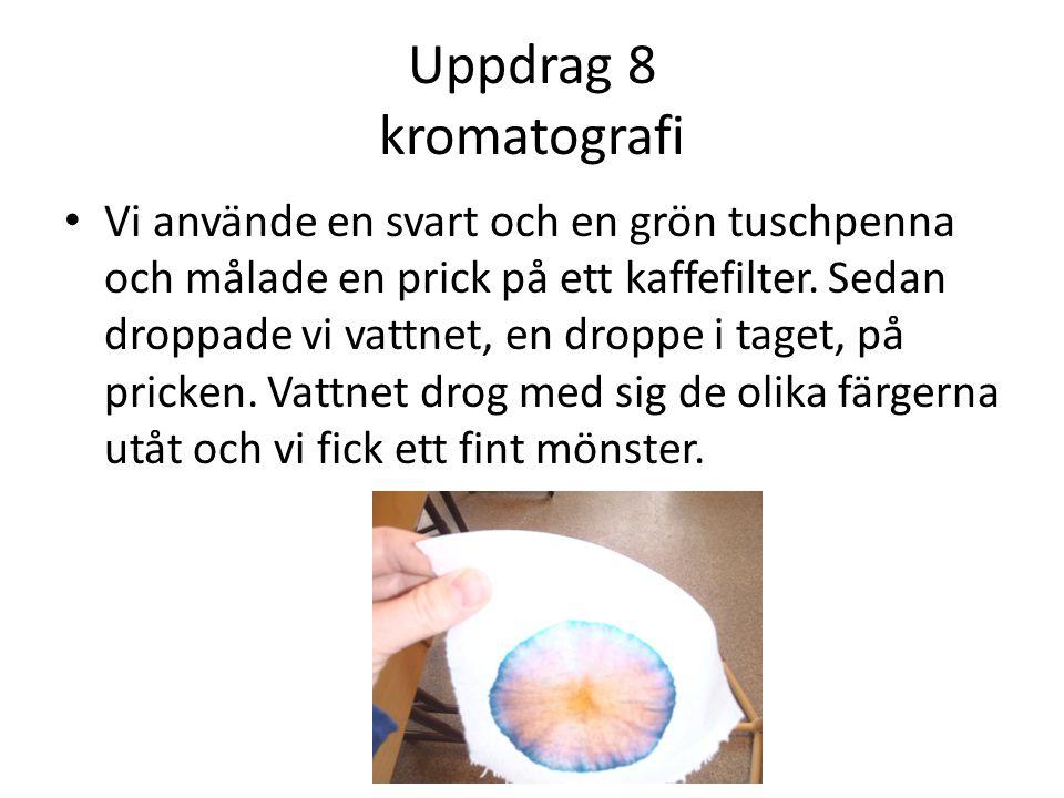 Uppdrag 8 kromatografi • Vi använde en svart och en grön tuschpenna och målade en prick på ett kaffefilter.