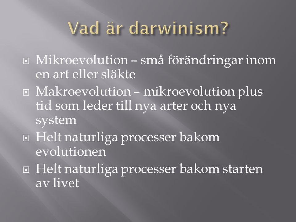  Mikroevolution – små förändringar inom en art eller släkte  Makroevolution – mikroevolution plus tid som leder till nya arter och nya system  Helt