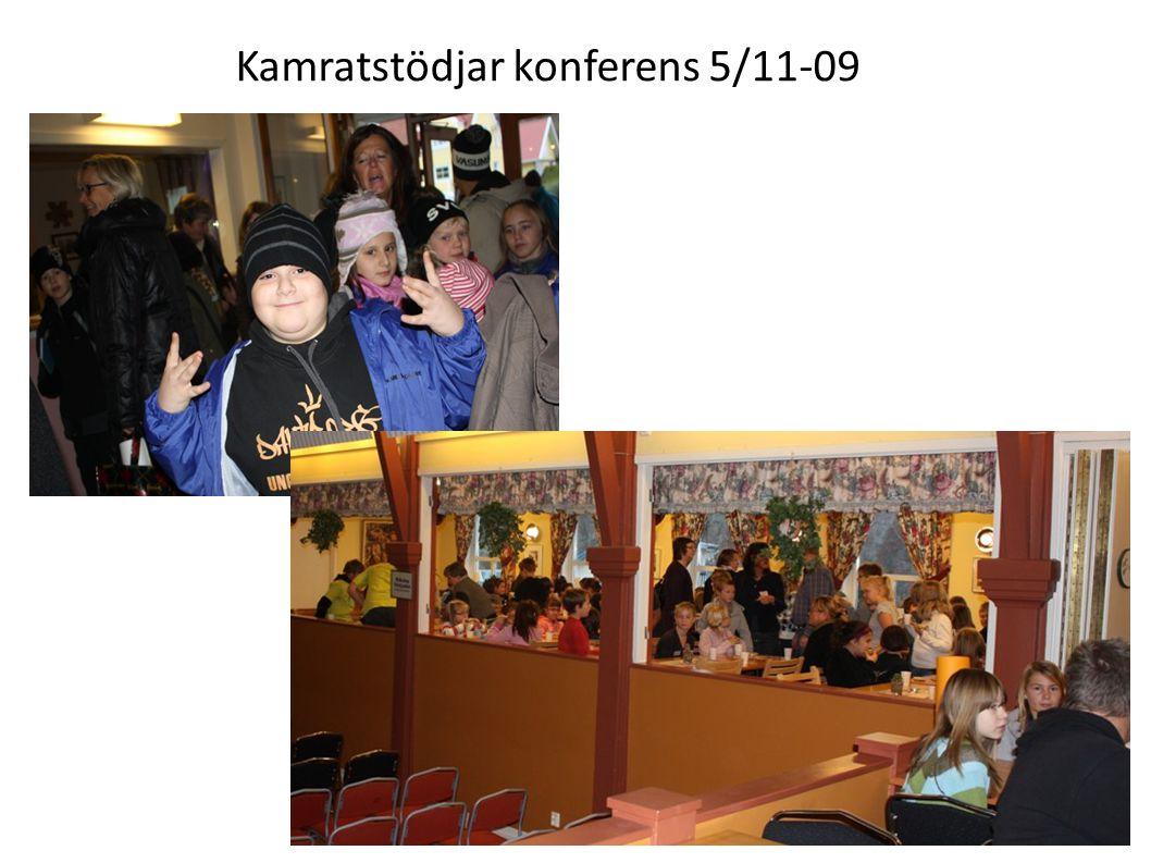 Kamratstödjar konferens 5/11-09 Före, under och efter lunch fanns det tid för kamratstödjarna att delta i andra aktiviteter också, såsom titta på utställningen, använda målarväggen och gå tipspromenad.