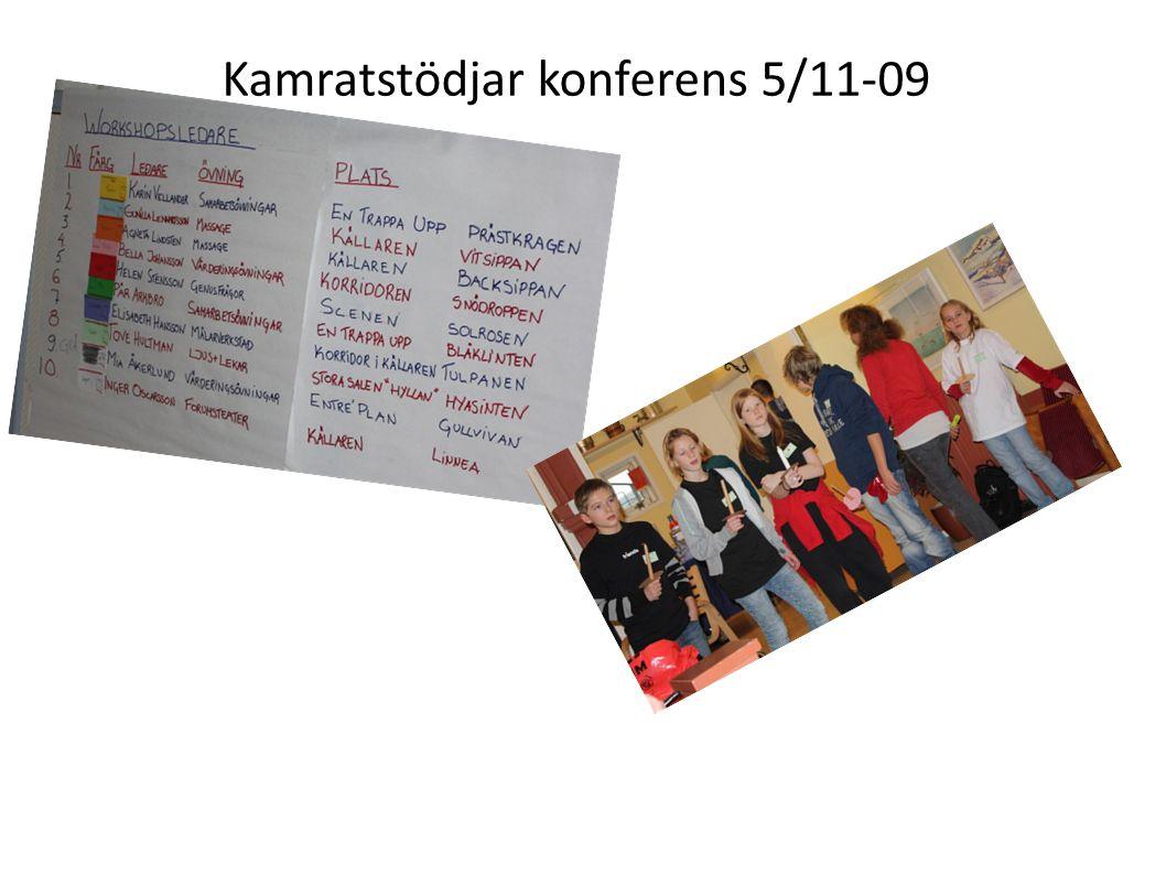 Kamratstödjar konferens 5/11-09 De frågeställningar som behandlades var:  Hur man som kamratstödjare kan göra när någon säger något elakt om kamratstödjaren i sin roll.