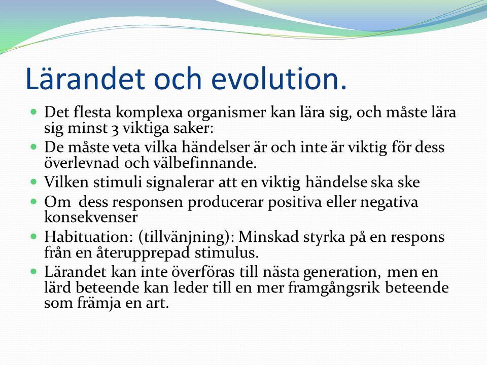 Lärandet och evolution.  Det flesta komplexa organismer kan lära sig, och måste lära sig minst 3 viktiga saker:  De måste veta vilka händelser är oc