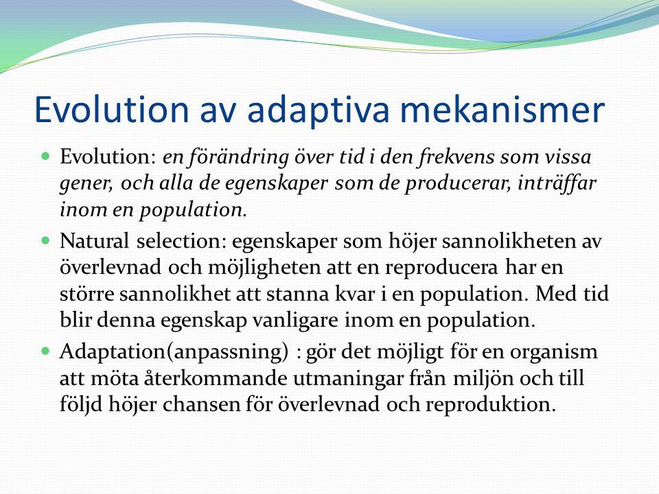 Evolution av adaptiva mekanismer  Evolution: en förändring över tid i den frekvens som vissa gener, och alla de egenskaper som de producerar, inträff